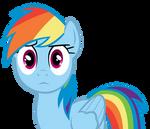 Rainbow Dash Doesn't Understand