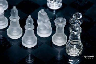 The Game of the Century by VanessaTSLarsen
