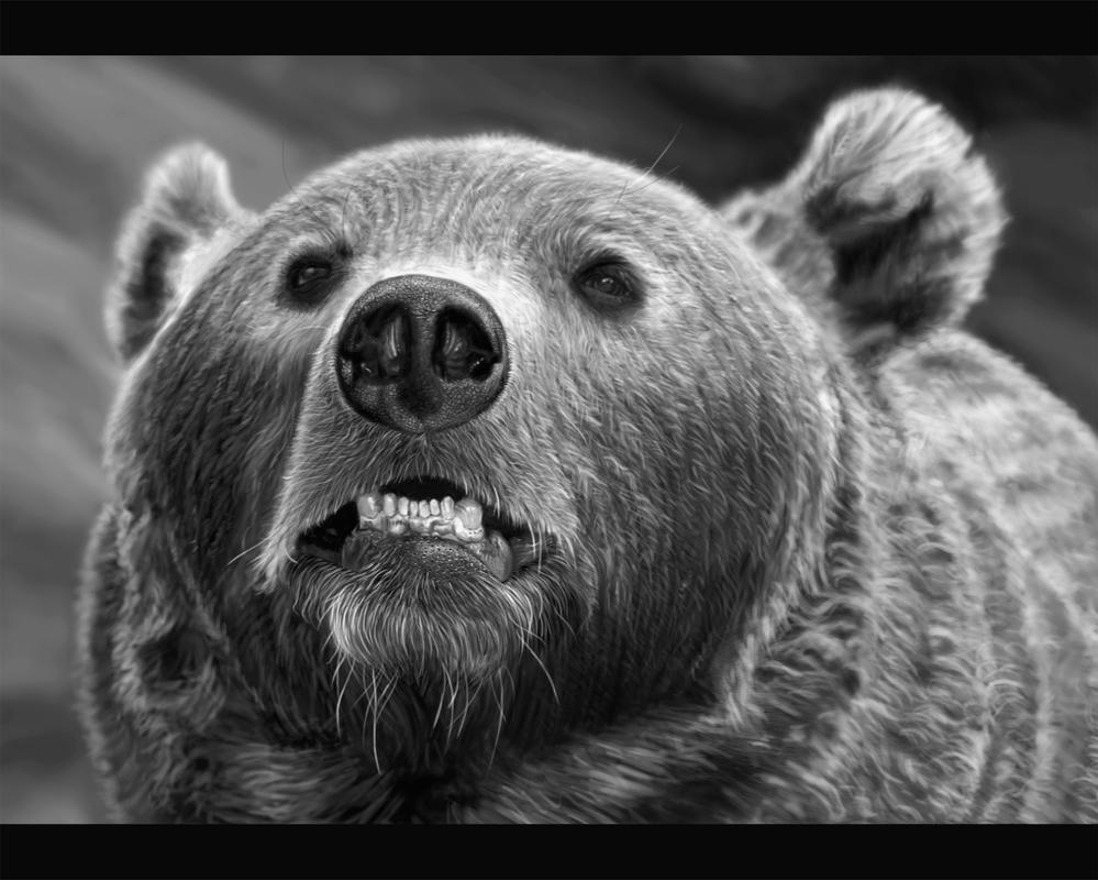 Bear by eye-work