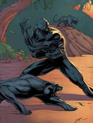 black panther by srijanart Colors