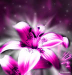Flower Effect