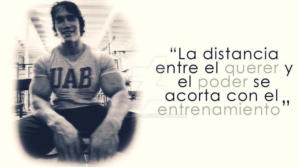 Arnold Gym Motivation Wallpaper By Bysalva93 On Deviantart