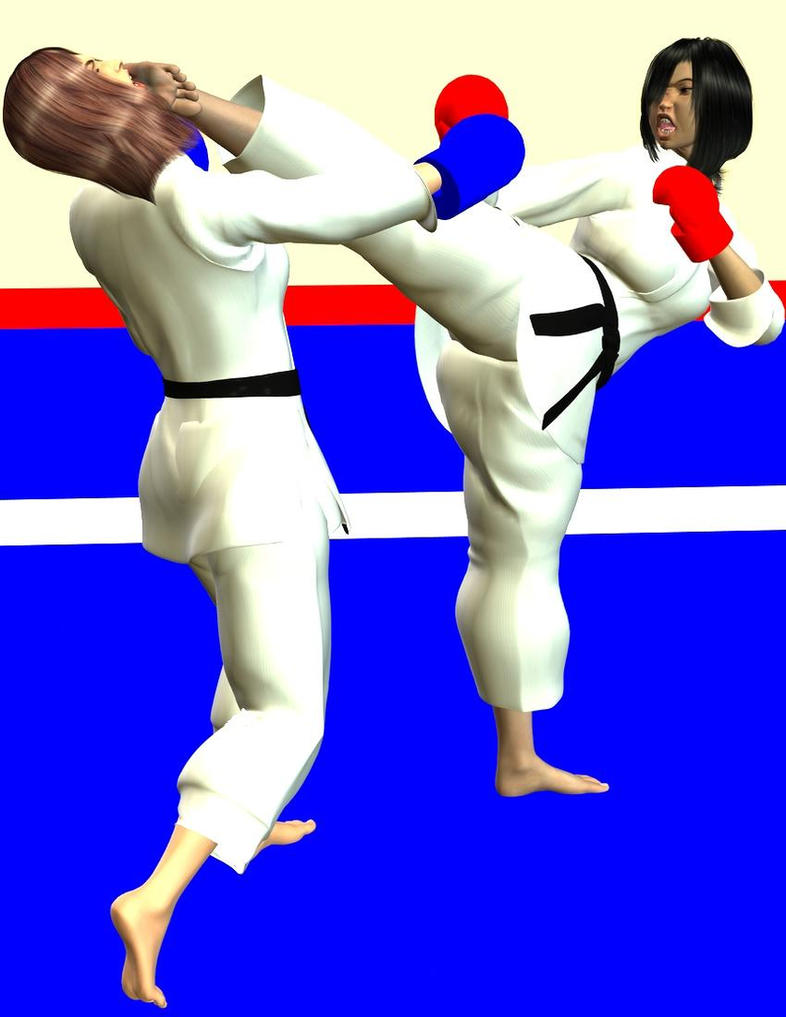 karate fight 2 by soldier2000 on deviantart
