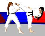 Karate fight 1