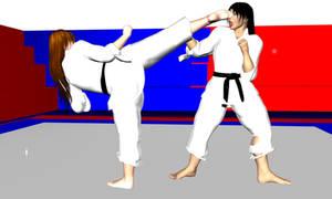 Karate fight 2