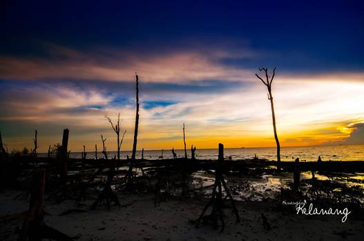 Memories Of Kelanang Beach