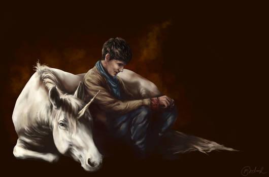 Merlin - Unicorn