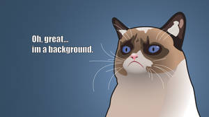 Grumpy Cat Background