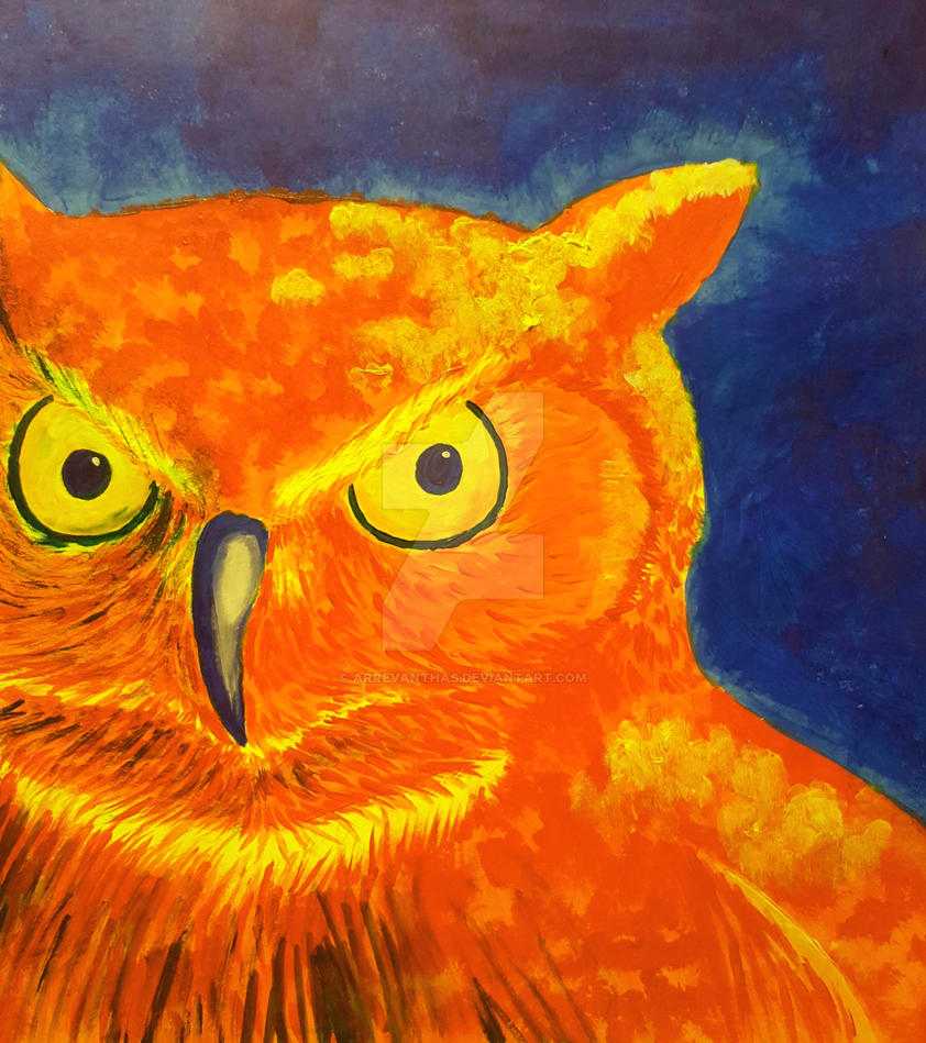 Complementary Colors Owl by Arrevanthas