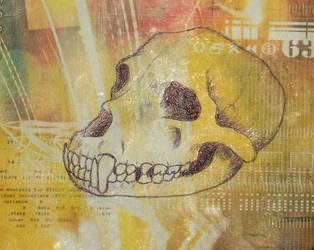 Skull by pfernona