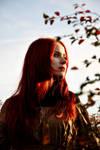 She and autumn IV