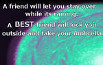 A Best Friend...