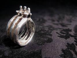 Vertebrae Ring