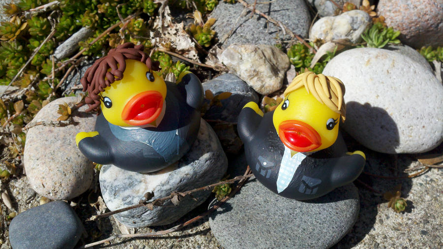 Sherlock and Watson Ducks by spongekitty