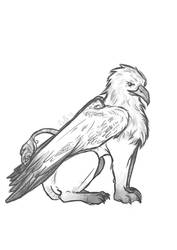 Griffin by volokine
