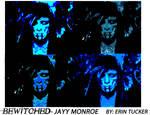 Jay Monroe pop art project