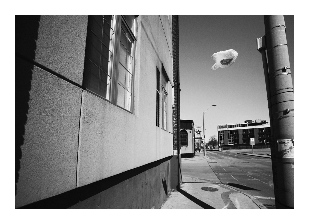 Gone with the wind 2 by panfoto
