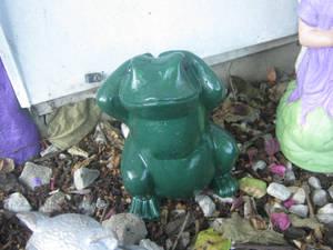 Finished Frog