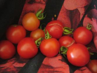 2020 Garden tomatoes