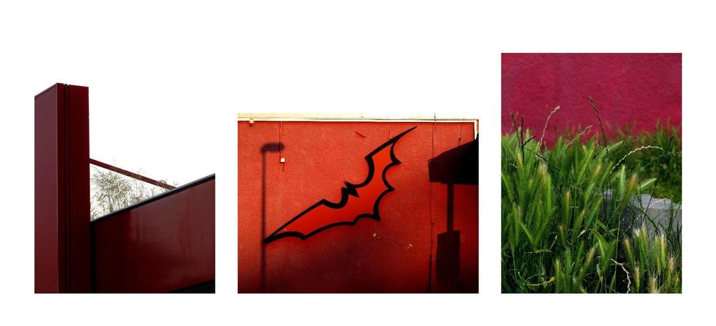 Red is growing by solsdottir