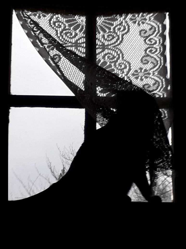 Au dela de la fenetre - beyond the window by Luckytrefle