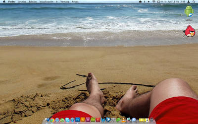 my vacations summer 2012 Litoral Central of Chile