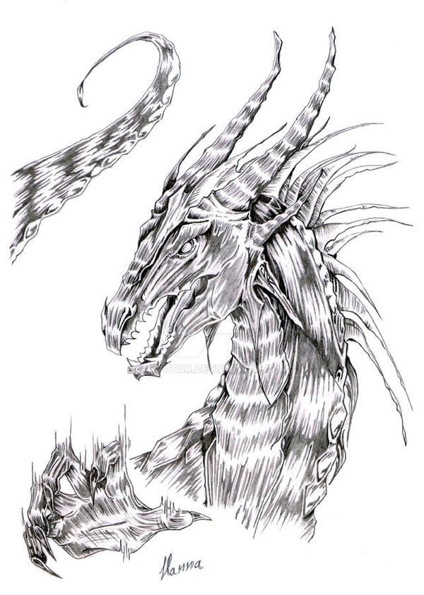 nidhogg dragon norse - 600×842