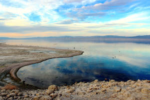 Edge of the Salton Sea by patrick-brian