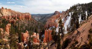 Bryce Canyon from Sheep Creek Overlook