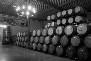 Whiskey Barrels II by patrick-brian