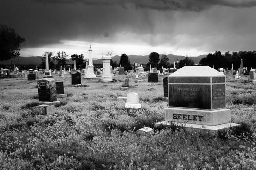 Riverside Cemetery IV