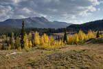 Fall in Colorado III