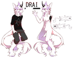 Drai [anthro sona]