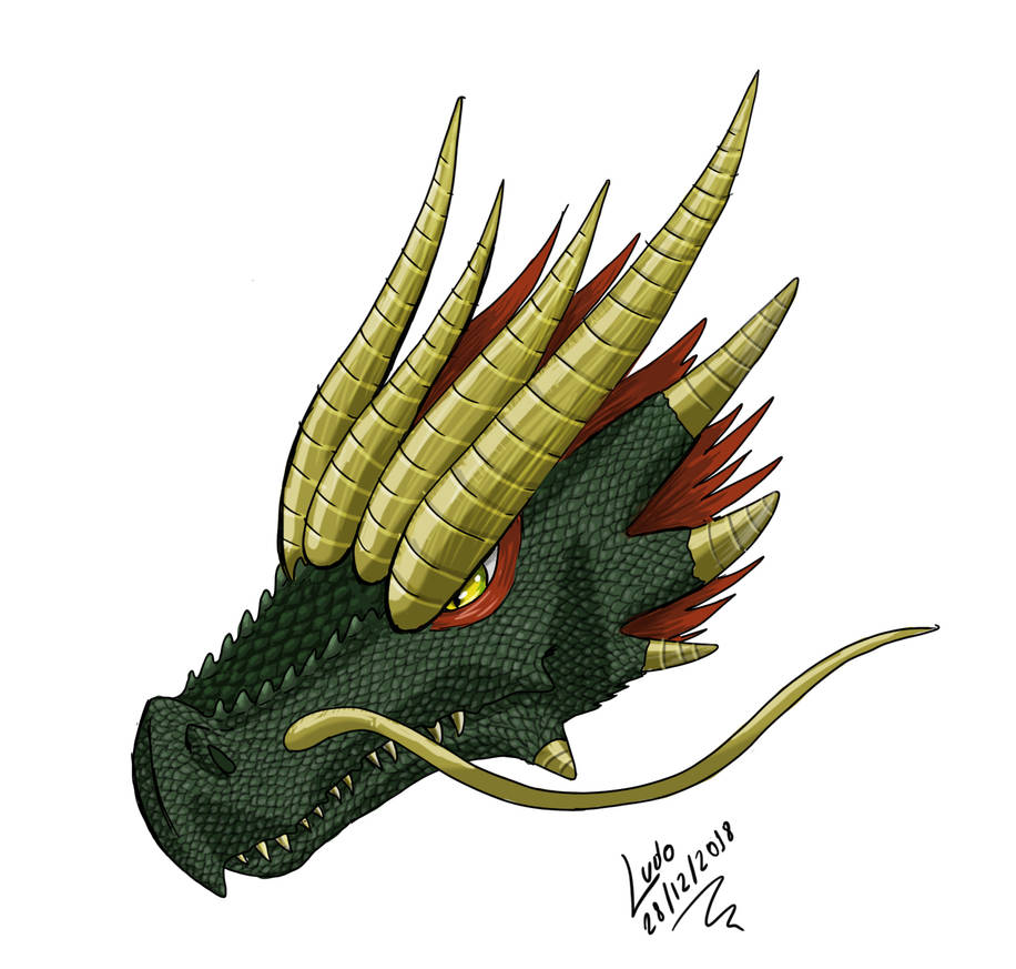 Dragon, first test with Wacom One by CTL-472 by LuRocha on