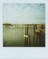 Polaroid 2 by lemoncakes
