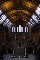 The Natural History Museum by too-much4you