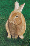 Bunny Left Handed Painting by GabrielLoboDX