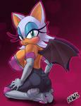 Bhawk-Rouge the Bat 02
