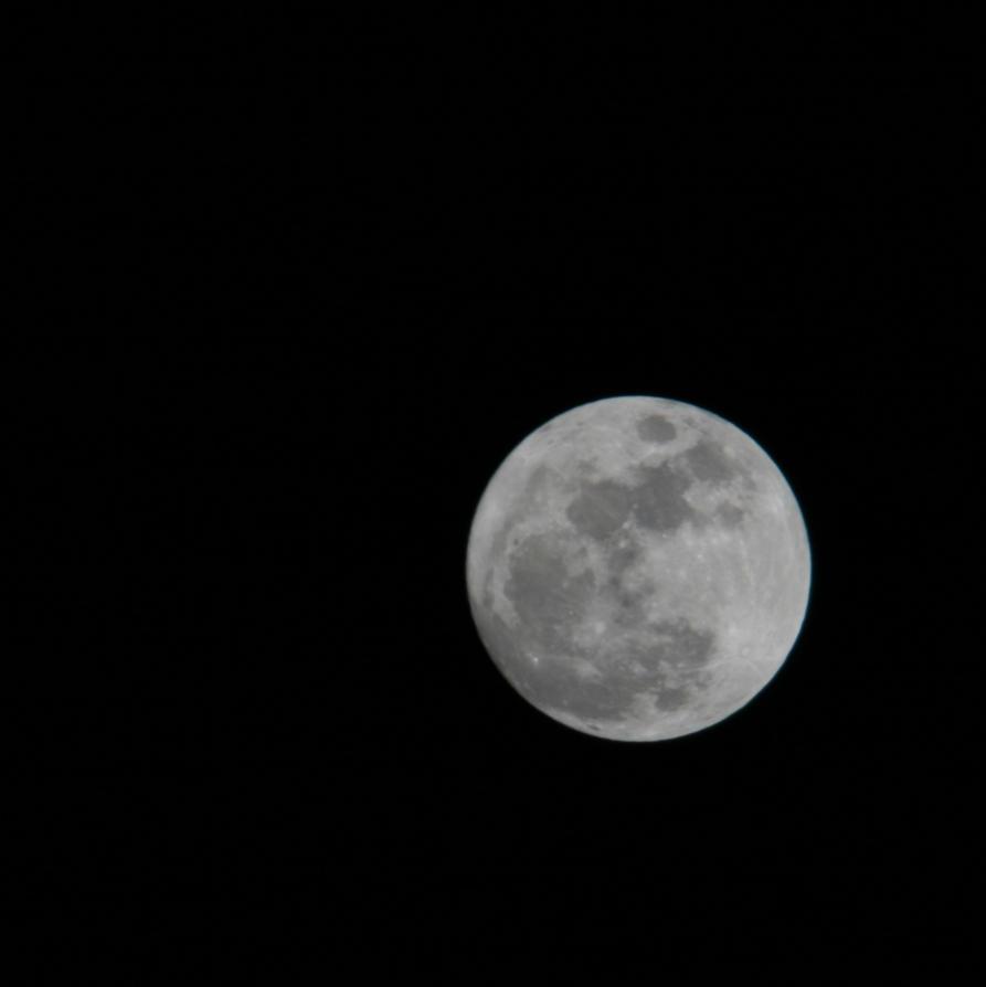 Luna by Milkyway84