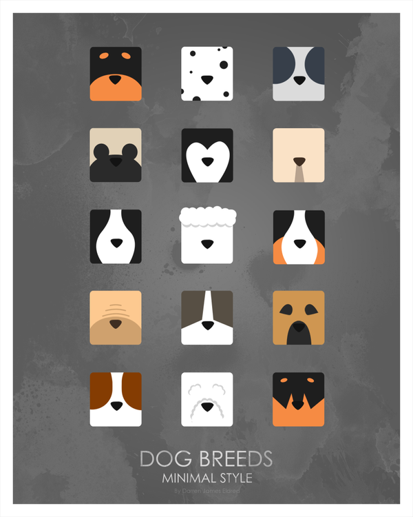 Poster Of All Dog Breeds