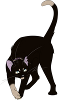 Warrior Cats #037 - Scourge