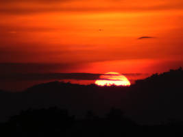 Fall of the Sun by jardorocks