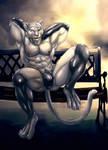 Bleakcat On Bench