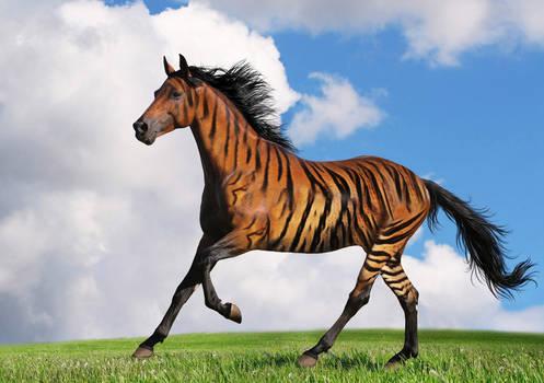 The horsiger