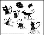 Who let all these cats in?