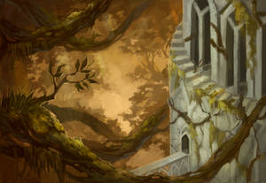 Library of Dawn forest