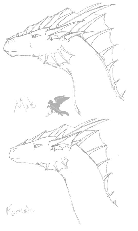 sky_dweller_dragons_by_forever_ebonycloud-d4kjc97.jpg