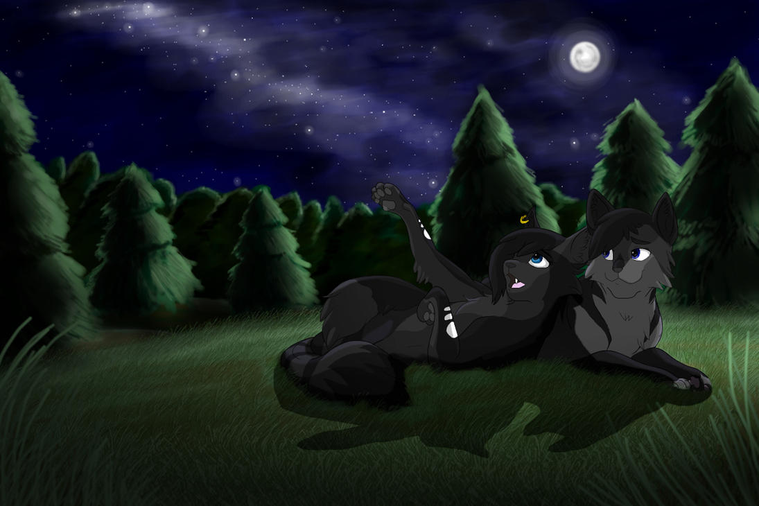 Nightambush Commission by Ebonycloud-Graphics