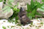 For sale: Pleading Birdies by Atanata