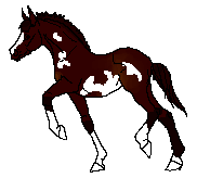 Outlaw Pixel by SunRayStables